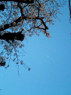 image/ne-tan-2006-04-07T17:36:41-1.jpg